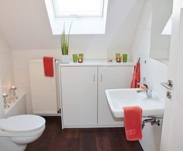 Sanibroyeur-salle-de-bain